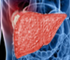 Top 5 Tips To Prevent Liver Cancer
