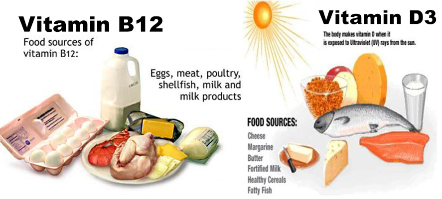 All You Need To Know About Vitamin B12 & Vitamin D3