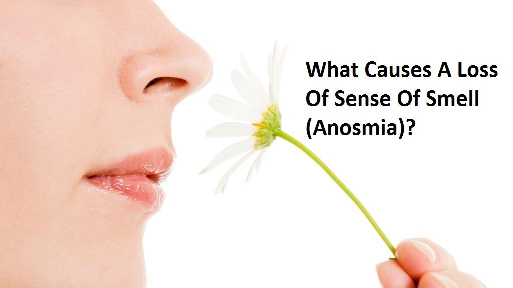 What Causes A Loss Of Sense Of Smell (Anosmia)?