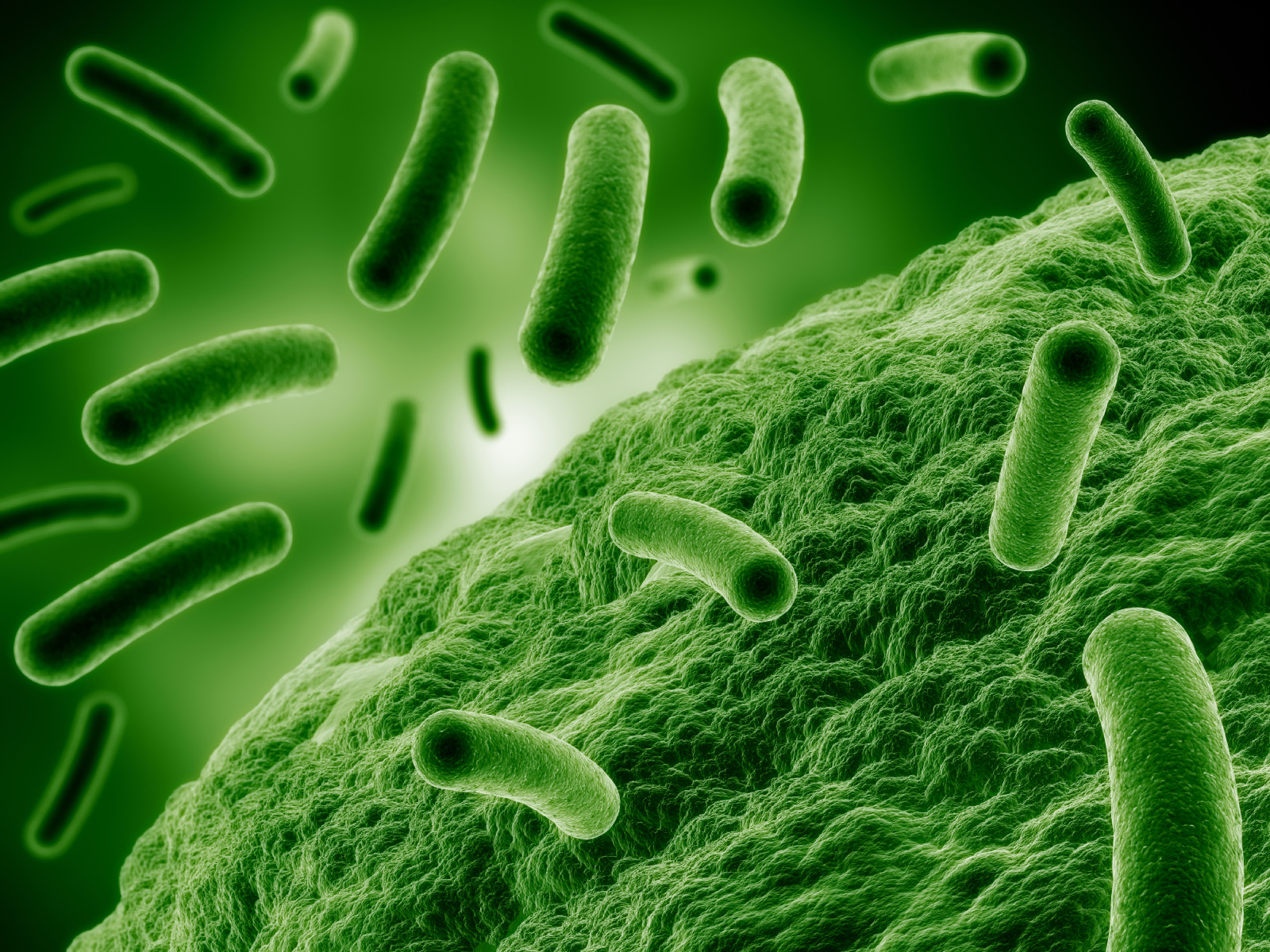 Antimicrobial Resistance: A Global Concern