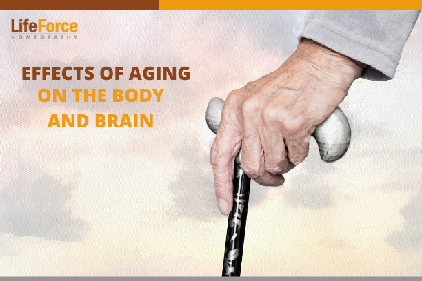 Effects Of Aging On The Body And Brain