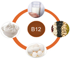 vitamin b12 for vitiligo