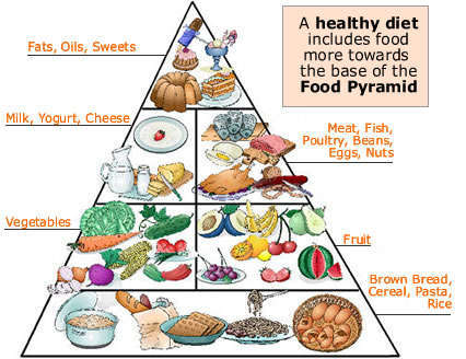 Healthy Diet Pyramid for Hair Loss
